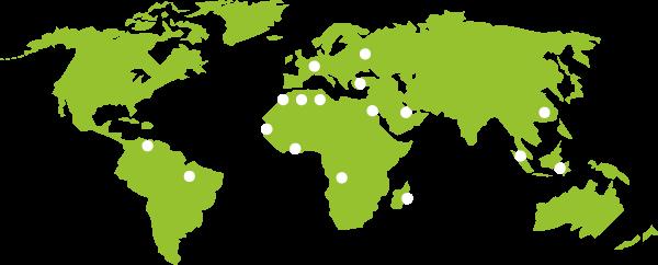 Serva international